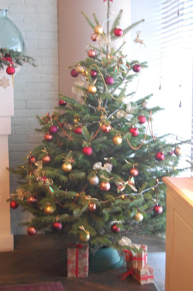 Купить елку нижний новгород